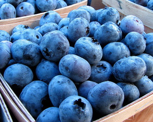blueberries6.jpg